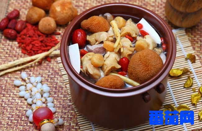 做菜食谱:猴头菇怎么吃(猴头菇煲汤)