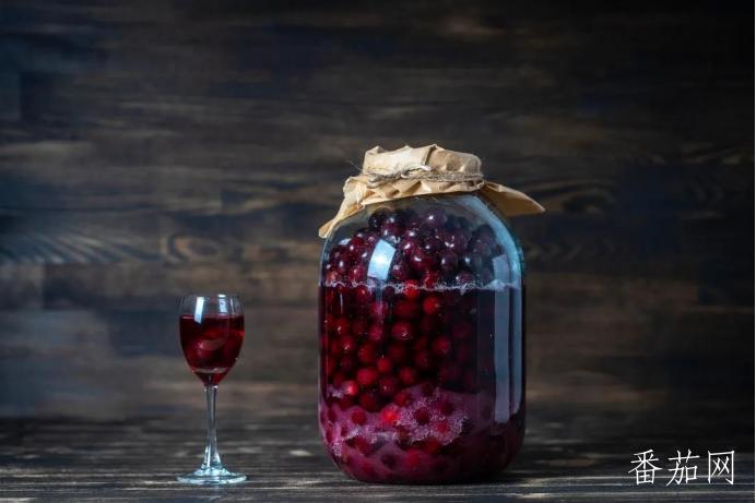 自制葡萄酒的酿制方法(如何自酿葡萄酒制作方法)